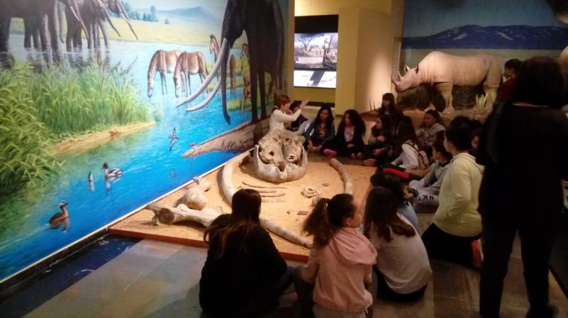 Visita al Museo Provincial de Ciudad Real